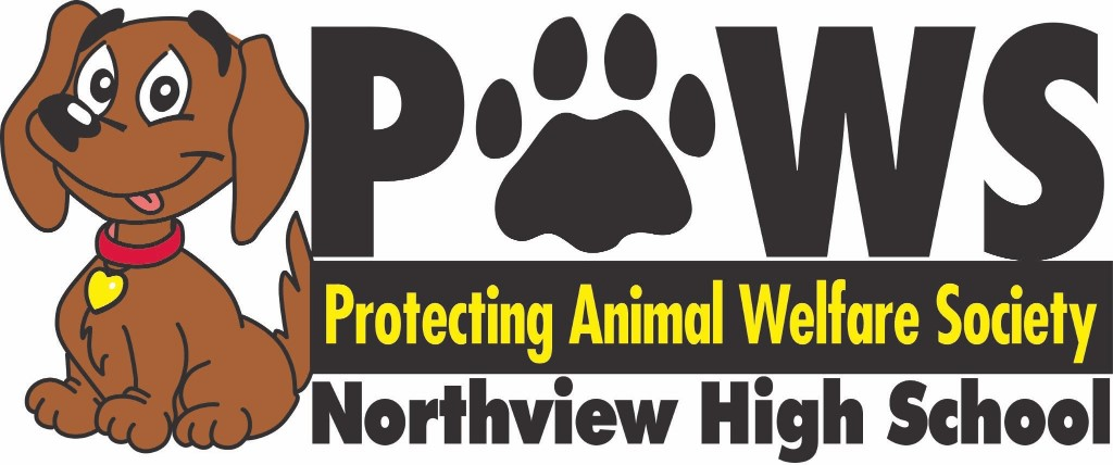 Northview PAWS